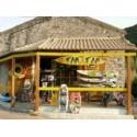 LE TAM TAM surf shop
